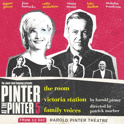 Pinter 5 The Room/Victoria Station/Family Voices Show Cover